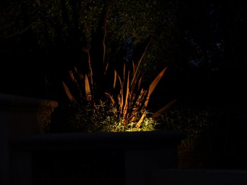 Landscape Lighting Lake Sherwood Dramatic Lighting