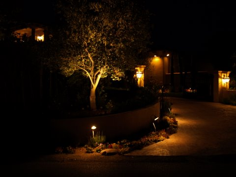 Landscape Lighting Lake Sherwood Driveway