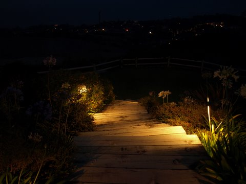 Landscape Lighting Lake Sherwood Steps