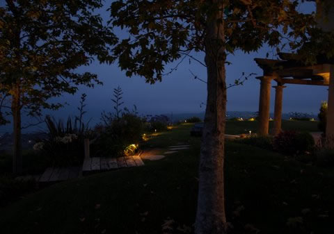 Landscape Lighting Lake Sherwood Pathways