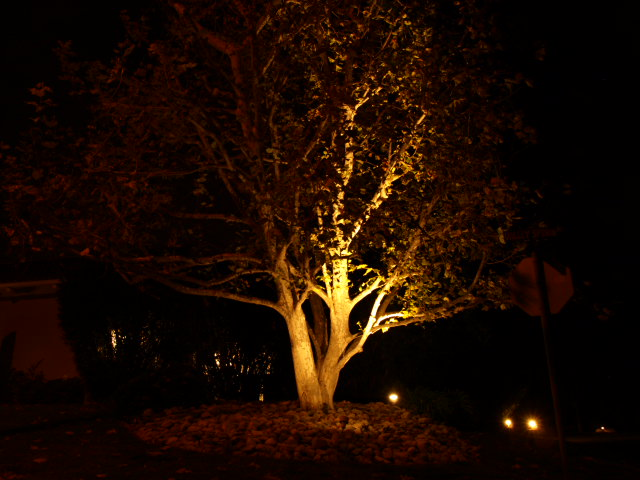 Landscape Lighting Landscape Lighting Lake Sherwood