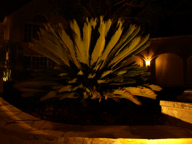 Landscape Lighting Lake Sherwood